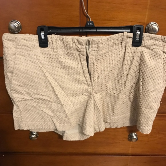 New York & Company Pants - New York and Company shorts